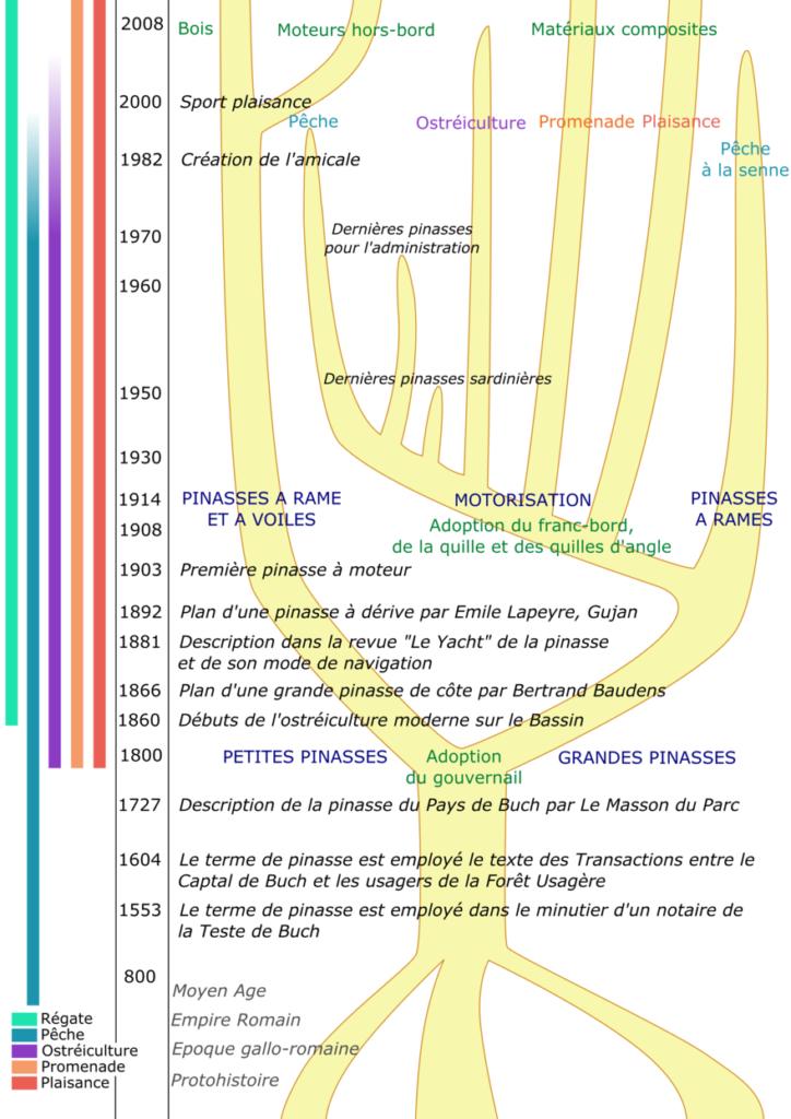 Arbre généalogique de la pinasse. Source Wikipédia